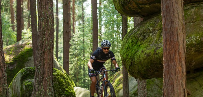 Mountainbike Waldviertel